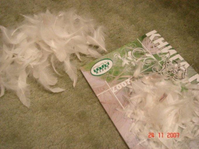 Материалы для изготовления елки из перьев