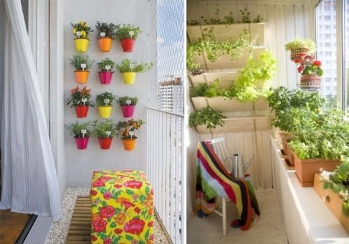 Сад на маленьком балконе