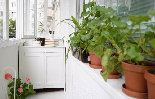 Интерьер маленького балкона. Фото 12