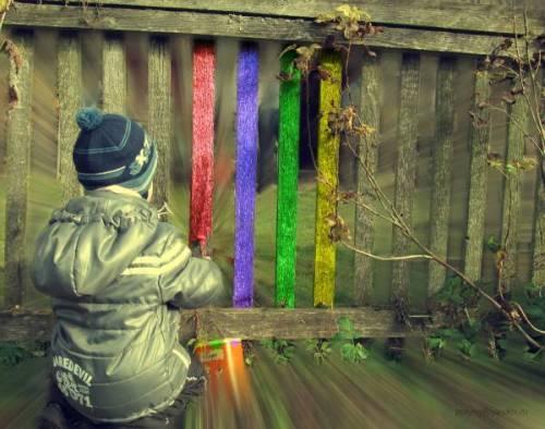 Забор – яркие моменты жизни