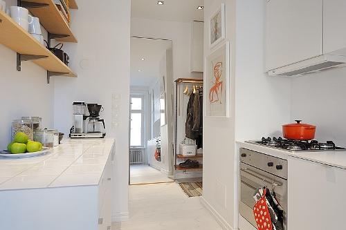 Дизайн однокомнатной квартиры. Кухня проходная