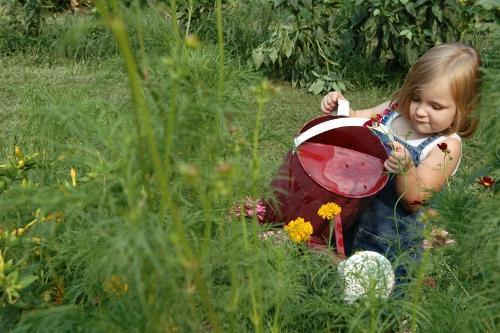 Цветочная клумба для детей