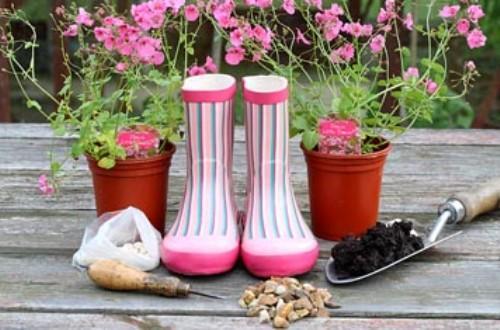 Набор инструментов и материалов для изготовления цветника