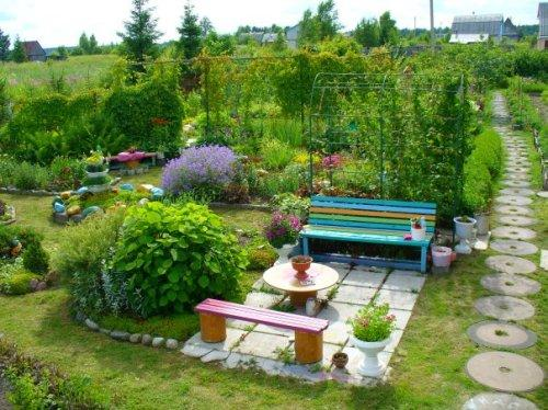 Вертикальное озеленение участка