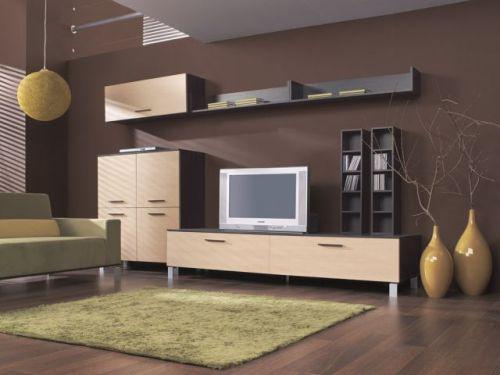 Мебель для гостиной. Выбираем мебель правильно. Фото