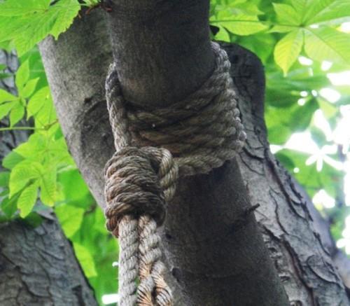Крепление веревки для качели