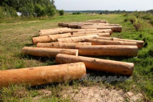 Бревна для деревянного фундамента