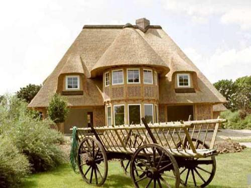 Крыша из камыша: особенности, преимущество, устройство