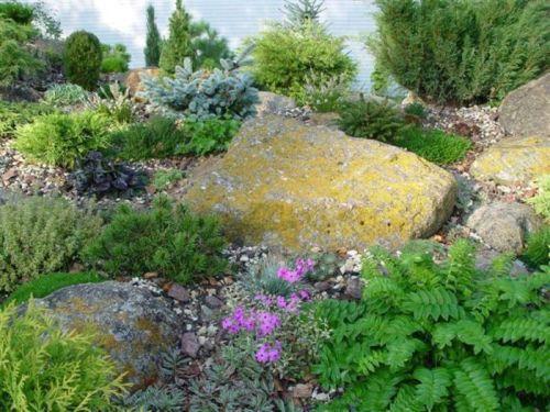 Альпинарий с больших камней