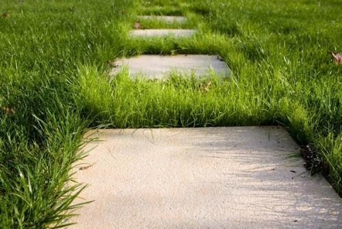 Как сделать садовые дорожки из бетона своими руками?