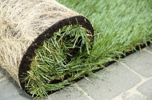Подрезка газона