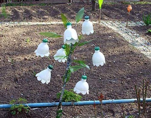 Поделки в огород из бутылок пошаговое