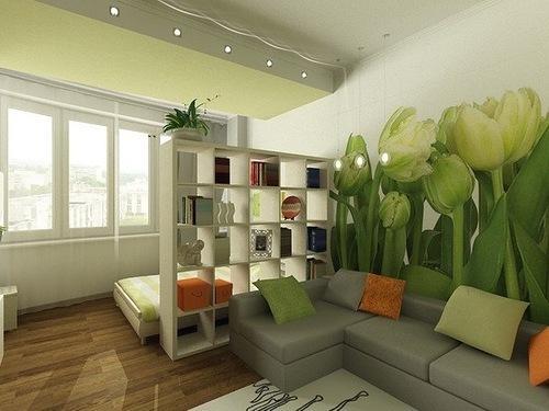 Стеллаж разделяет комнату на две зоны: спальню и гостиную