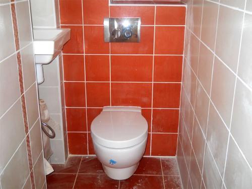 Яркое оформление туалета