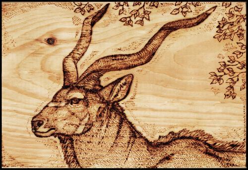 Рисунки и эскизы для выжигания по дереву