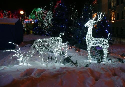 Светящийся новогодний олень для украшения участка своими руками