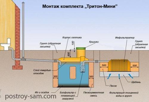 Тритон-мини