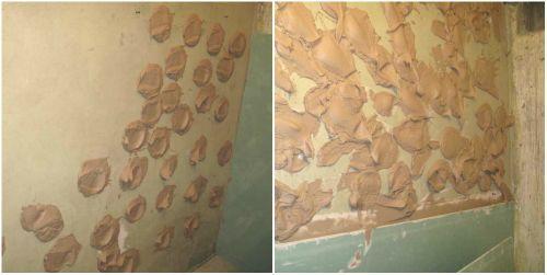 Как наклеить гипсокартон на стену?