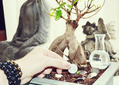 Привлечение денег с помощью волшебных ритуалов
