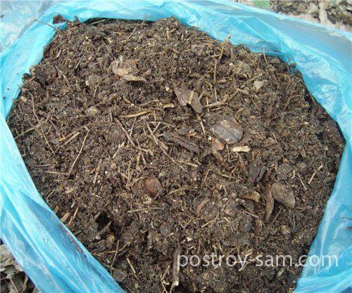 Лесная подстилка для мульчирования почвы
