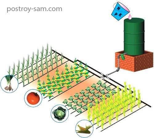 Запуск системы автоматического полива