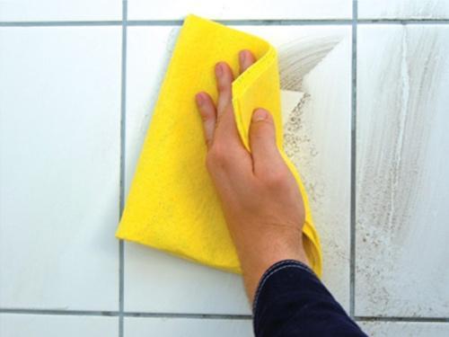 Чем удалить грибок с плитки в ванной?