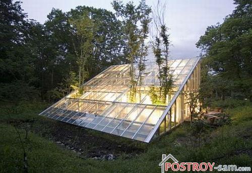 Какое освещение нужно растениям в теплице? Особенности и виды освещения теплиц