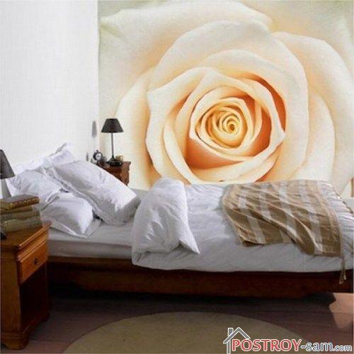 Роза на фотообоях