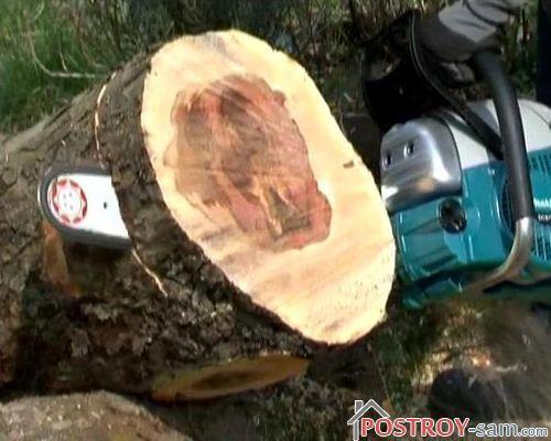 Распиливание дерева на кольца