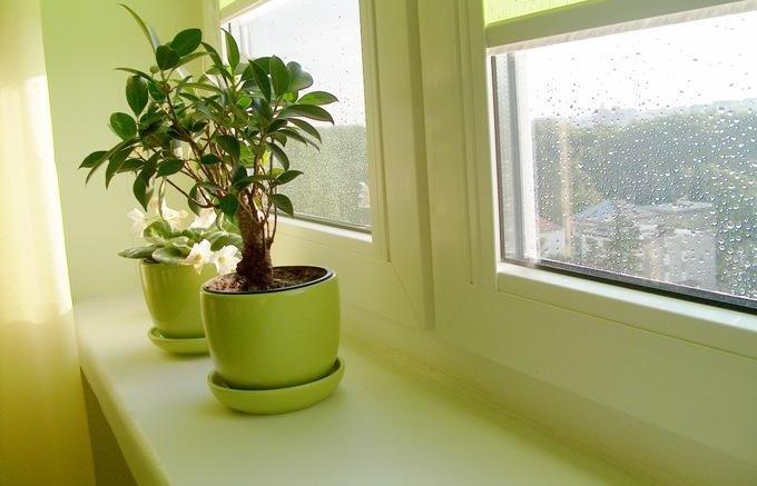 Как сделать чистым воздух в квартире