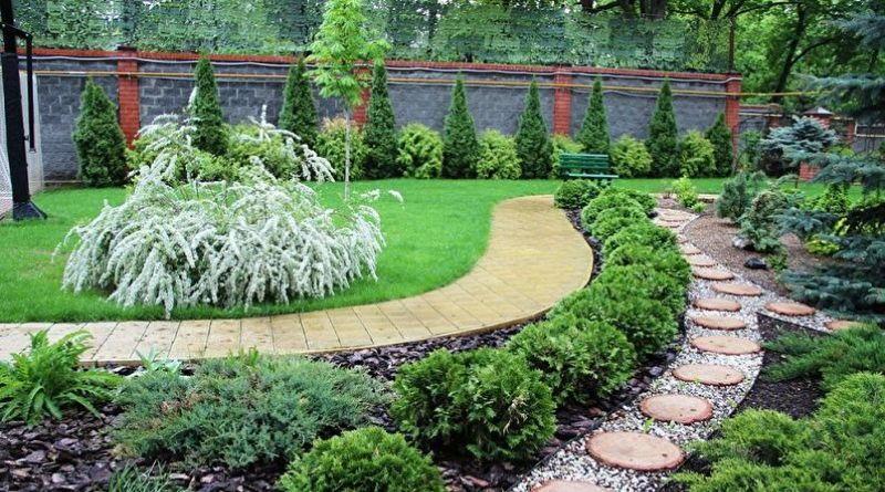 Идеи озеленения дачного участка